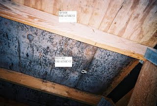 There Are Two Basic Methods For Performing Stain Removal Either Chemically Or Via Soda Blasting We Ly The Removing Solution